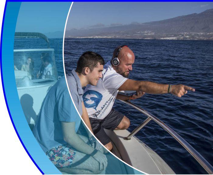 mirar y escuchar las ballenas tenerife water sports puerto colon adeje 2