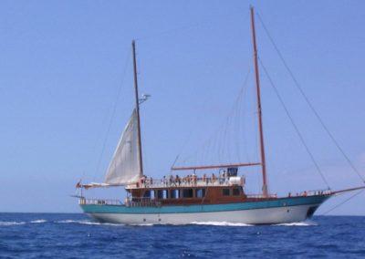 fotos 1 barco de water sports los cristianos